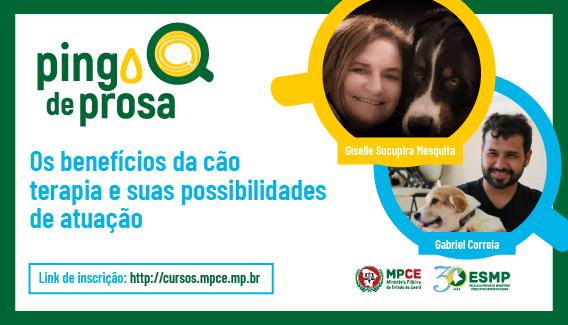 Pingo de Prosa - Os benefícios da cão terapia e suas possibilidades de atuação