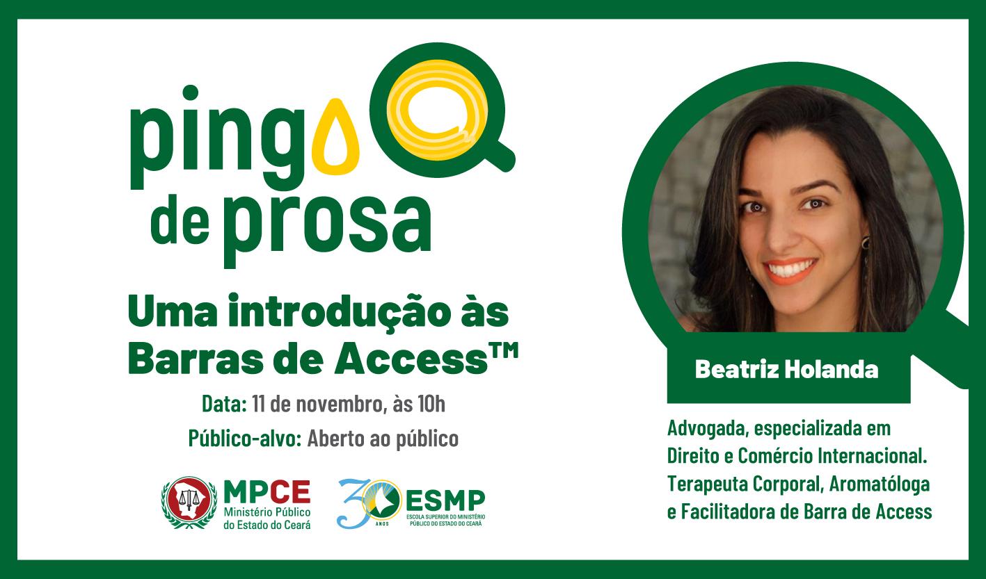 PINGO DE PROSA - UMA INTRODUÇÃO ÀS BARRAS DE ACCESS